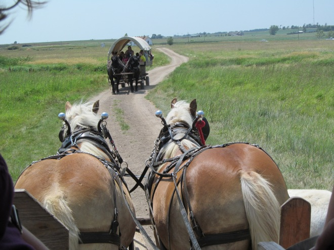 Horse Drawn Wagons at Ingalls Homestead