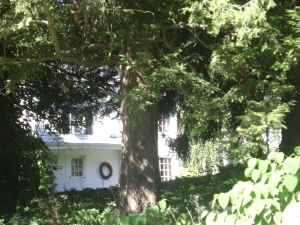 Rose's House in Danbury from Road