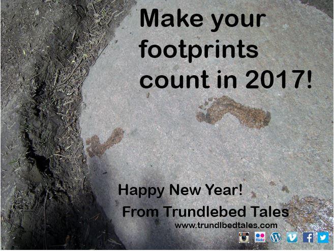 tt-new-year-2017