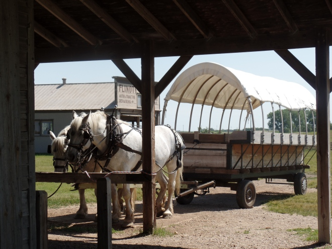 Horses and Covered Wagon