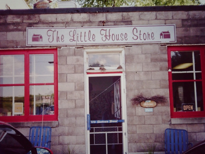 A store front with the sign Little House Store