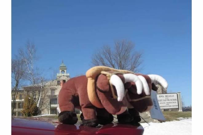 Toy Oxen in Vinton